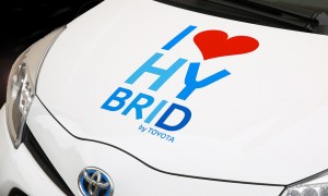 hybrid-428183_960_720